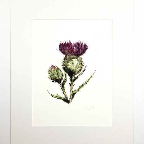 THISTLE/FLOWER OF SCOTLAND ART PRINT