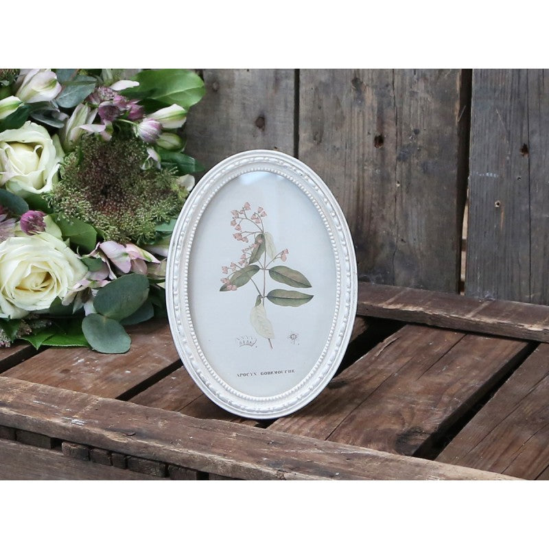 Cream Oval Frame - 2 Sizes