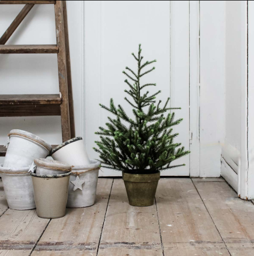 60cm Potted Tree