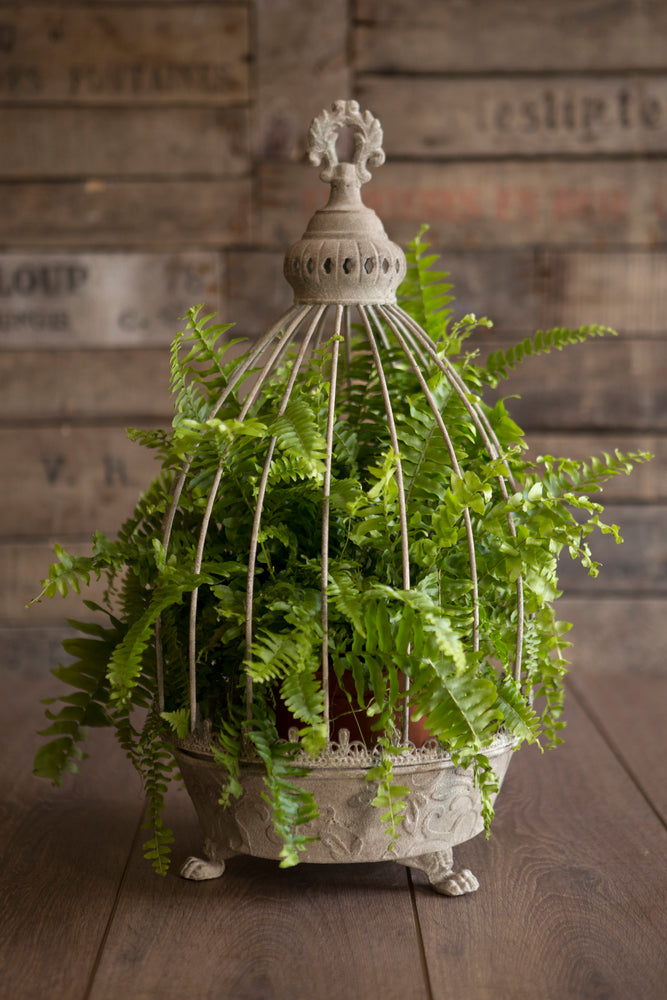 Distressed Caged Planters - 2 Sizes