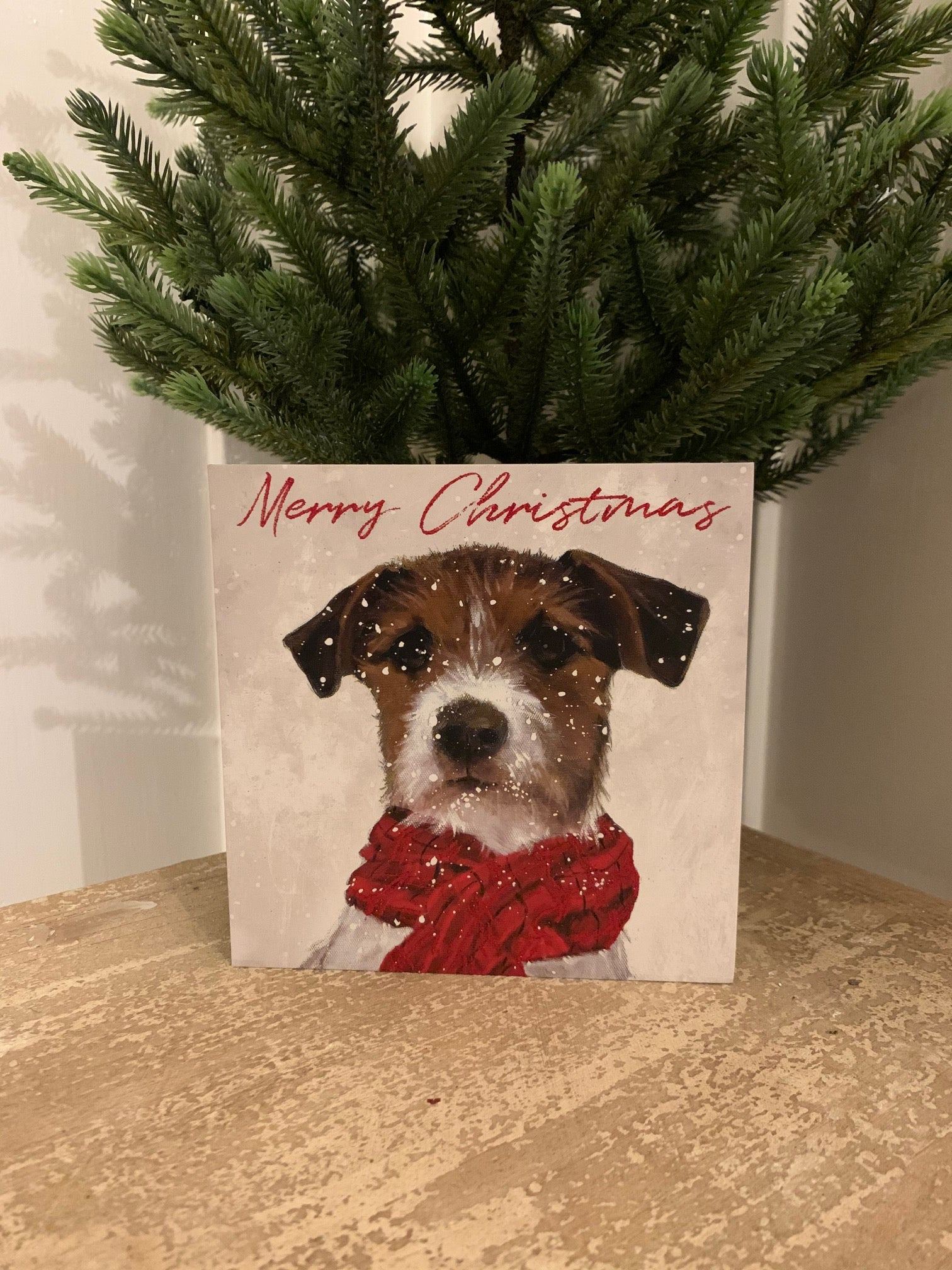 Christmas Cards - Pack of 6 - 'Archie'