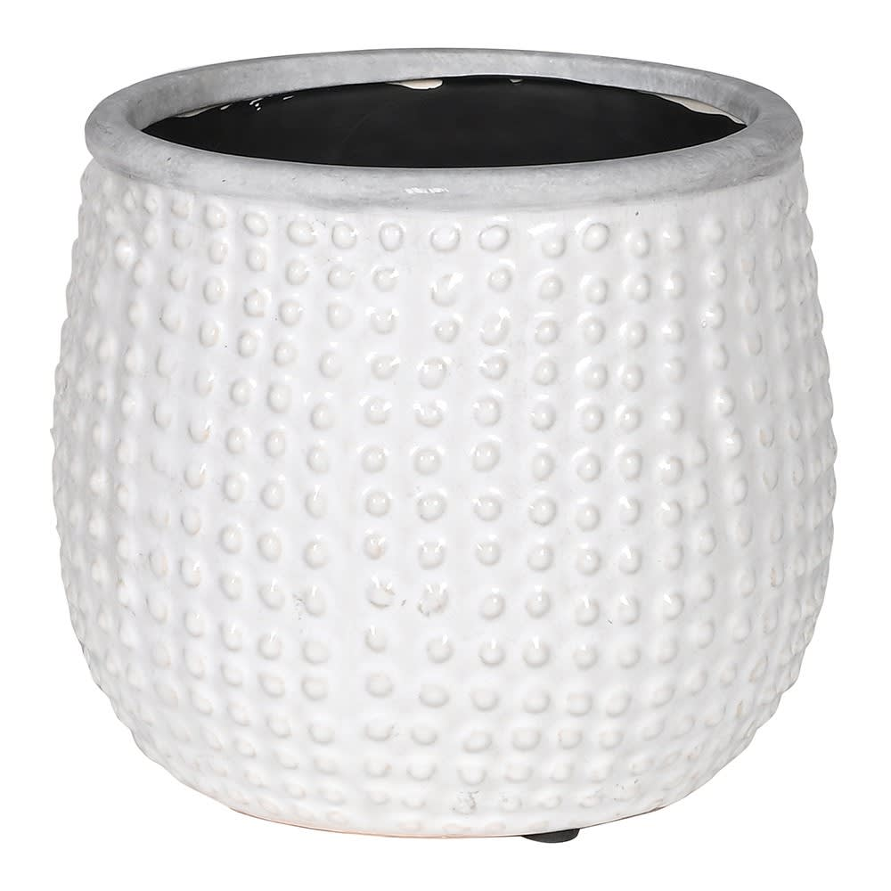White dotty planter