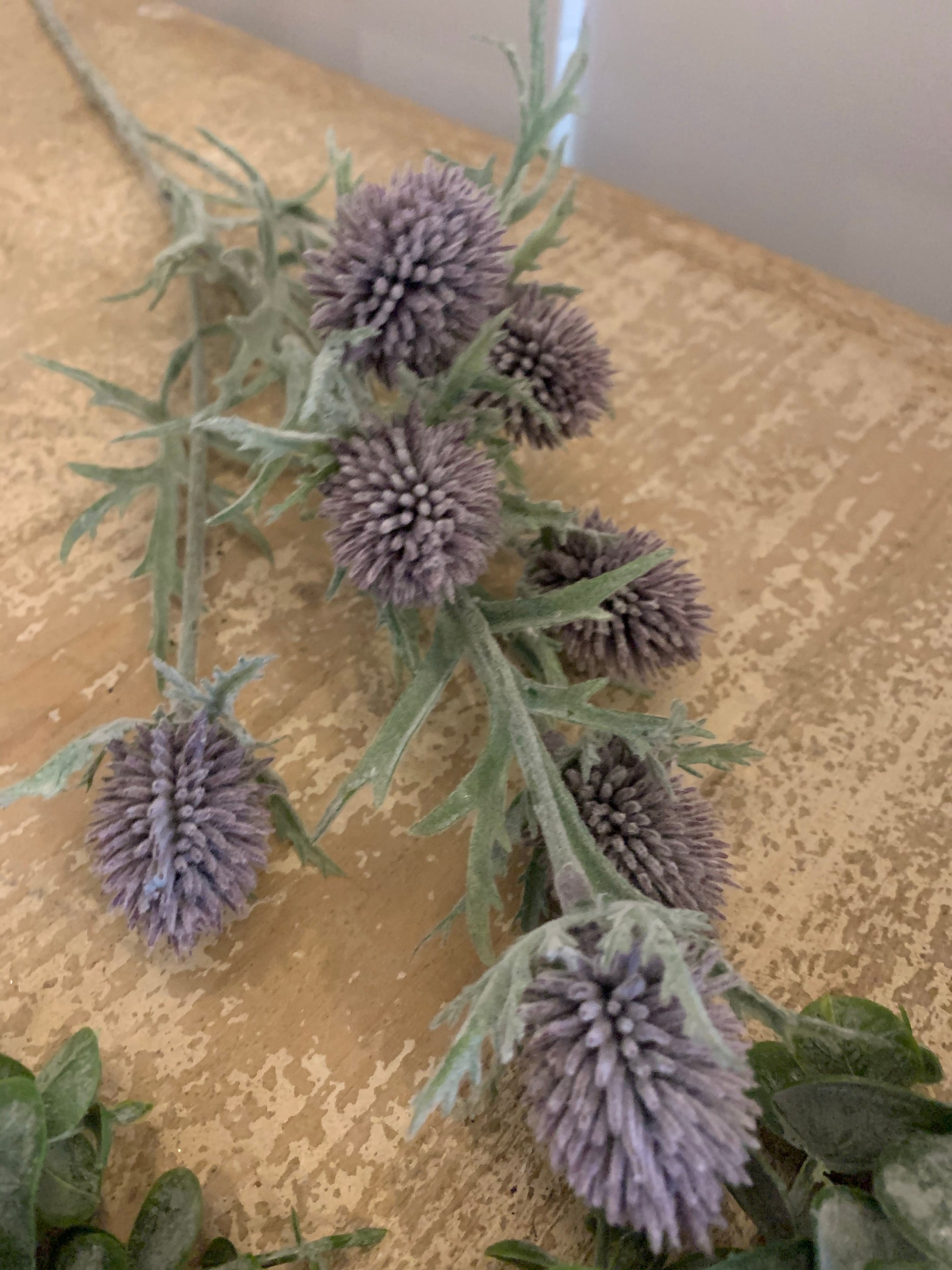 Thistle spray