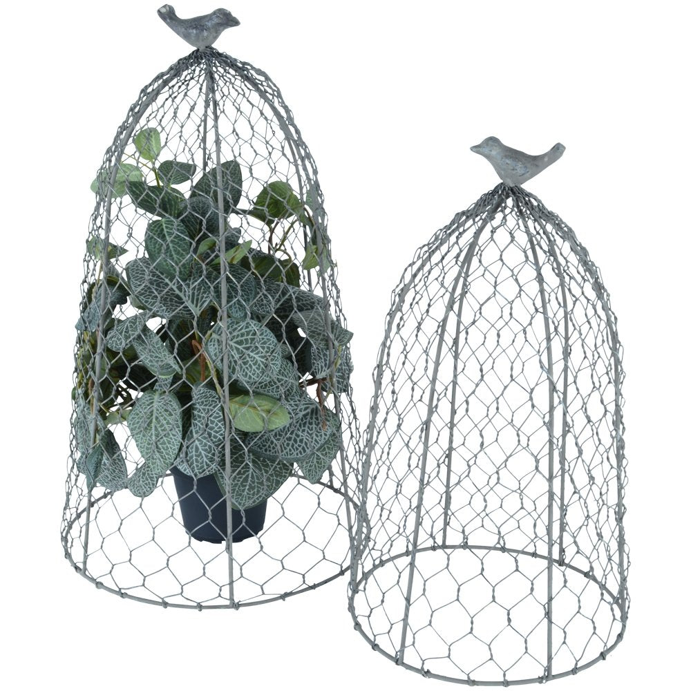 Wire chicken cloches - 2 sizes