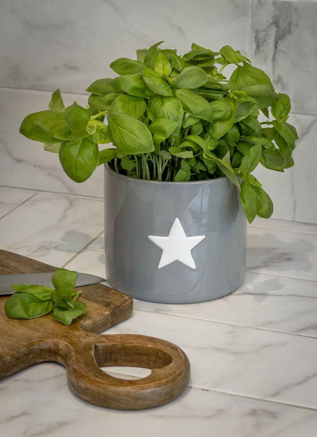 Grey or White Star Pot - 2 Colours