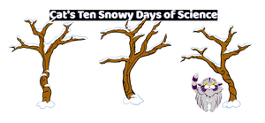 Ten Snowy Days with Cat: Pre-Order