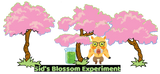 Sid's Blossom Explosion: Pre-Order