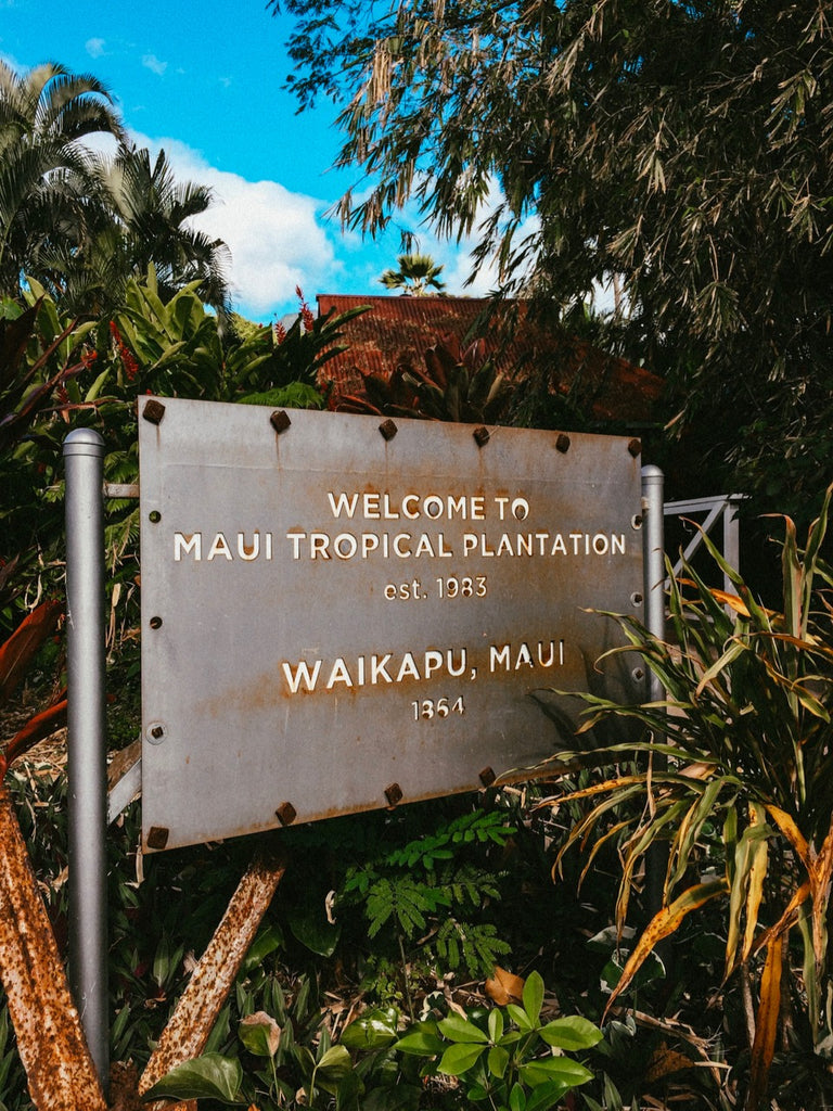 Free Things To Do In Maui: Maui Tropical Plantation