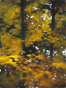 Fall Yellow Trees - Art Print