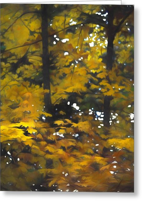 Fall Yellow Trees - Greeting Card