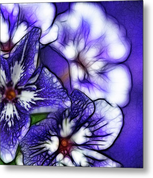 Purple And White Flowers - Metal Print