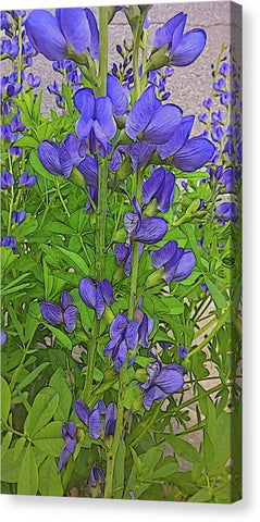 Purple Flowers - Canvas Print