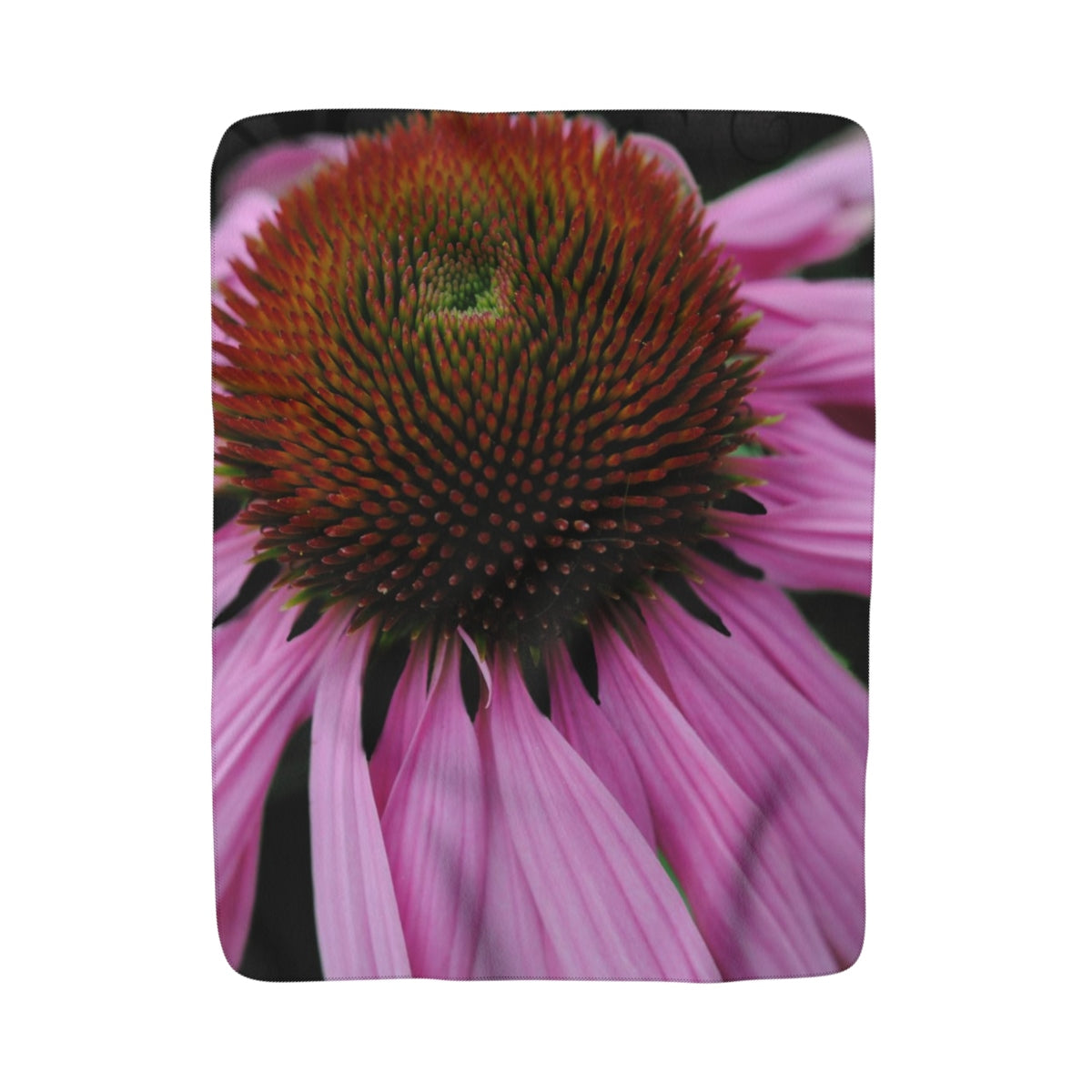 Pink Cone Flower Sherpa Fleece Blanket - expressive-flower-art-goods.myshopify.com