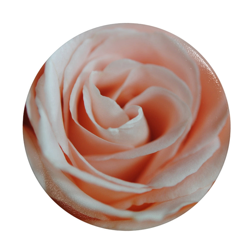 Pink Rose Close Up Phone Grip