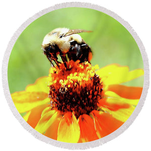 Bee On A Flower - Round Beach Towel