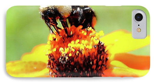 Bee On A Flower - Phone Case
