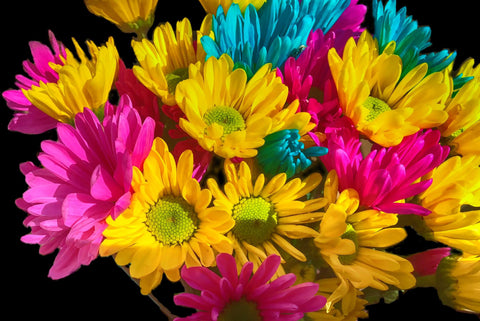 Bright Spring Flowers Digital Image Download