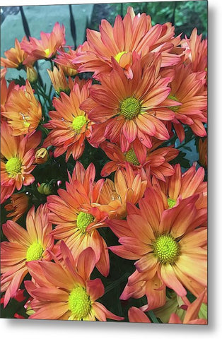 Cream And Pink Watered Flowers - Metal Print