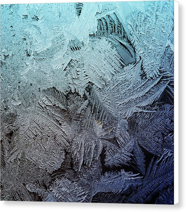 Frost 5 - Canvas Print