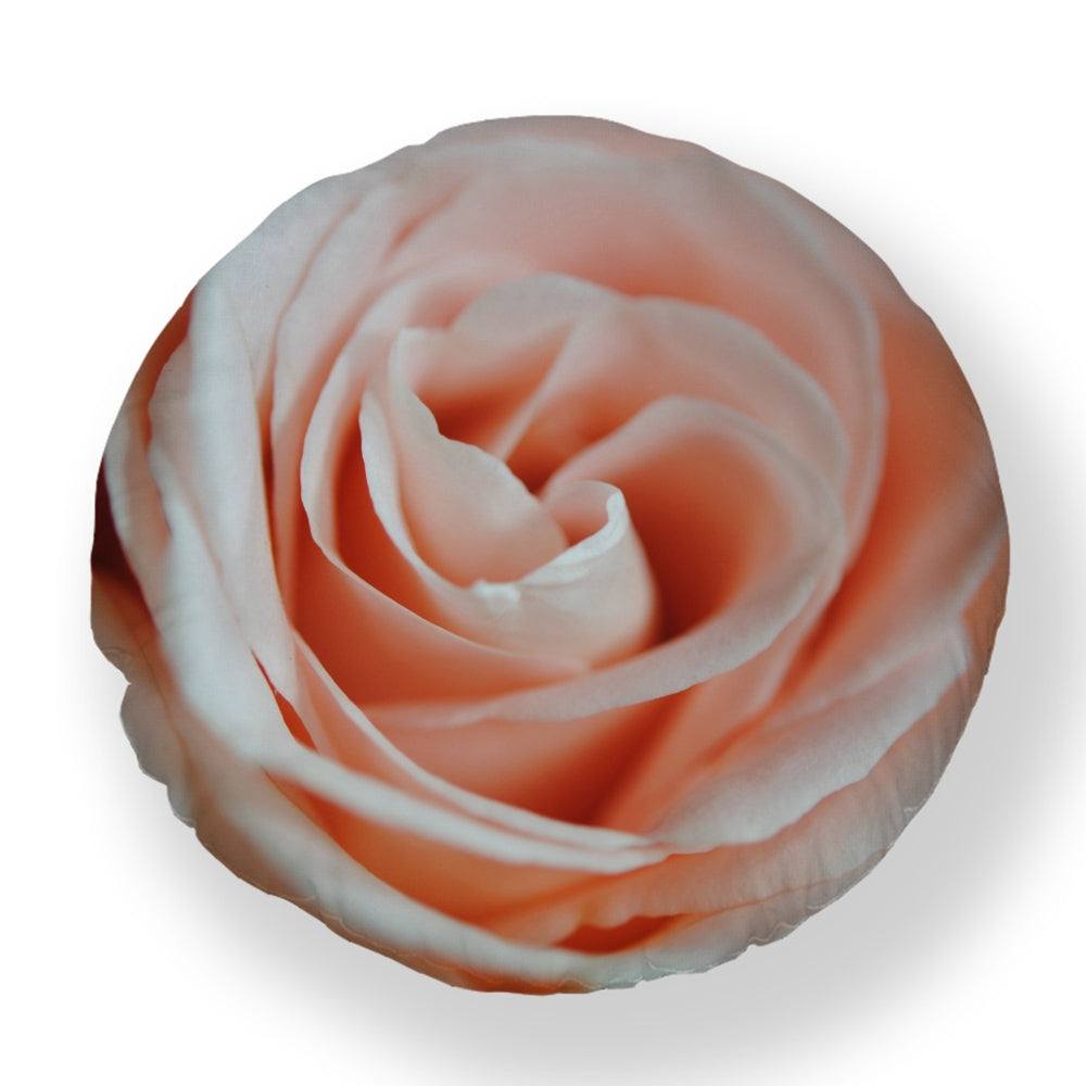 Pink Rose Close Up Round Throw Pillow