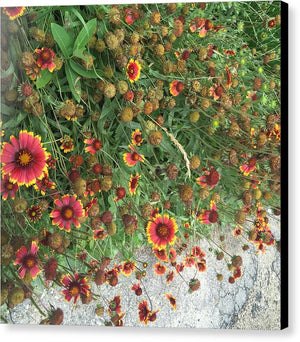 Orange Flower Garden - Canvas Print