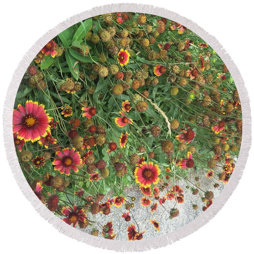 Orange Flower Garden - Round Beach Towel