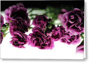 Pink And Purple Carnations On Lightbox - Greeting Card - expressive-flower-art-goods.myshopify.com