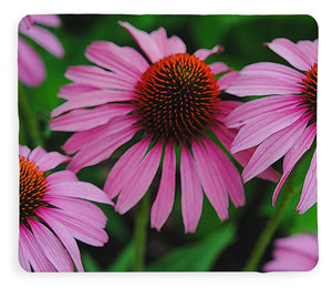 Purple Cone Flowers - Blanket - expressive-flower-art-goods.myshopify.com