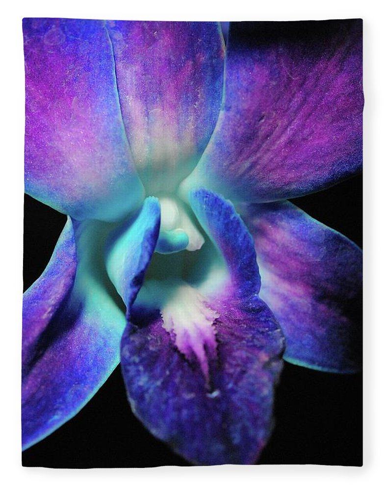 Purple Orchid Close Up On Black - Blanket