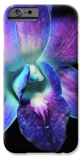 Purple Orchid Close Up On Black - Phone Case