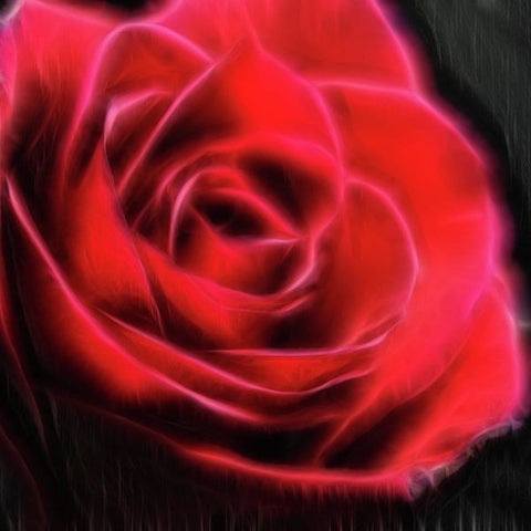 Red Rose Stylized - Art Print