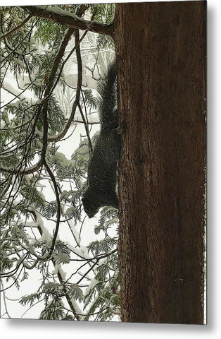 Squirrel On A Snowy Tree - Metal Print