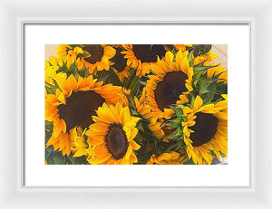 Sunflowers - Framed Print