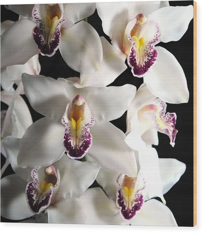 White Orchid Spray - Wood Print