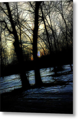 Winter Twilight Teases The Woods - Metal Print