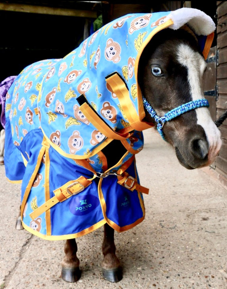 colourful horse rugs, horse rug, turnout rugs, rainsheet horse rug, horsewaer, quilted stable blanket, yellow horse rug, hobby horse western wear, ride on rugs for horses, horseware blanket sale