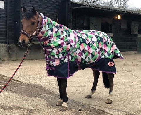patterned horse rugs
