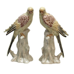 Figurine Pastel Parrots set of 2