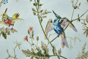 Hummingbirds Cotton<br>F62/1004</br>