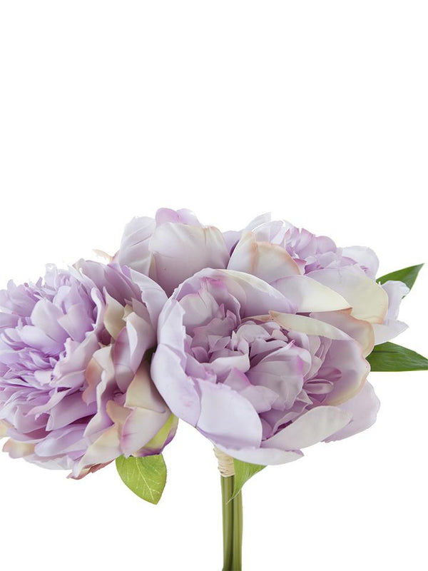 "10"" Peony Bundle (Various Colors)"