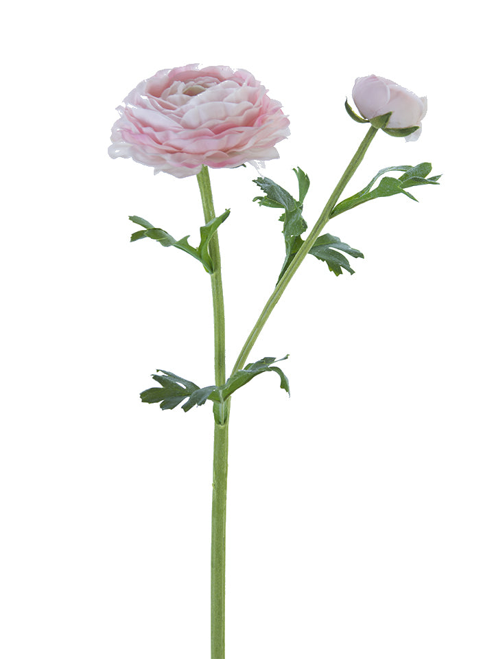 "24"" Pink Real Touch Asiatic Ranunculus Stem"
