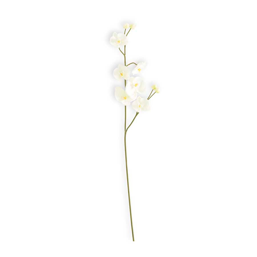 Real Touch Orchid Stems