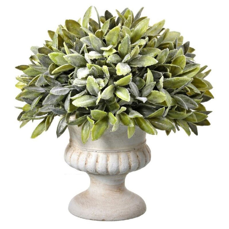 Flocked Sage Boxwood Topiary in Urn