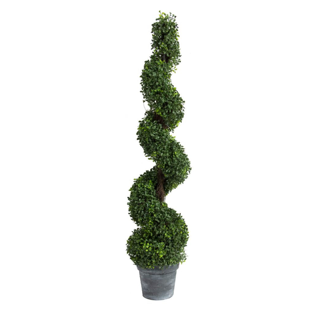 Swirled Boxwood Topiary