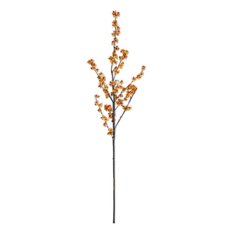 "40"" Orange and Yellow Bittersweet Branch"