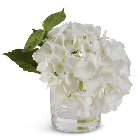 White Real Touch Hydrangea in Glass Vase