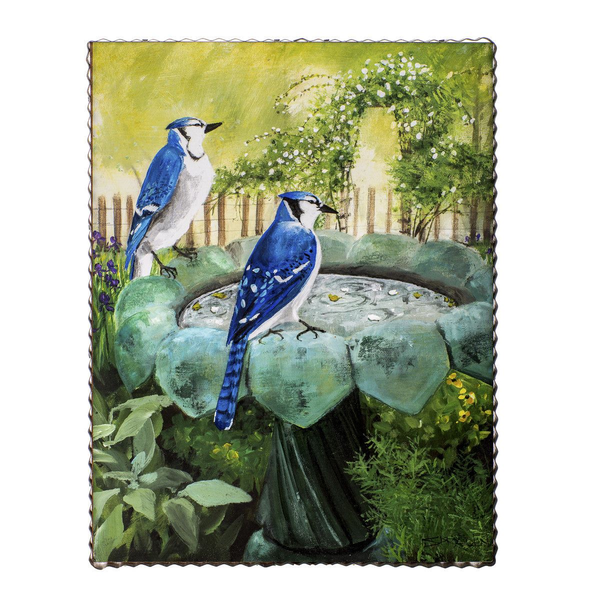 Blue Jay Gallery Print