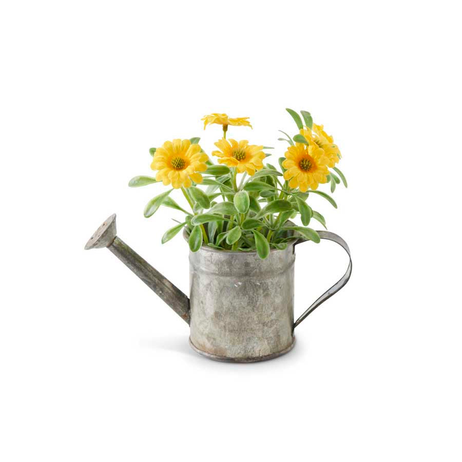 Tin Watering Can with Yellow Daisies