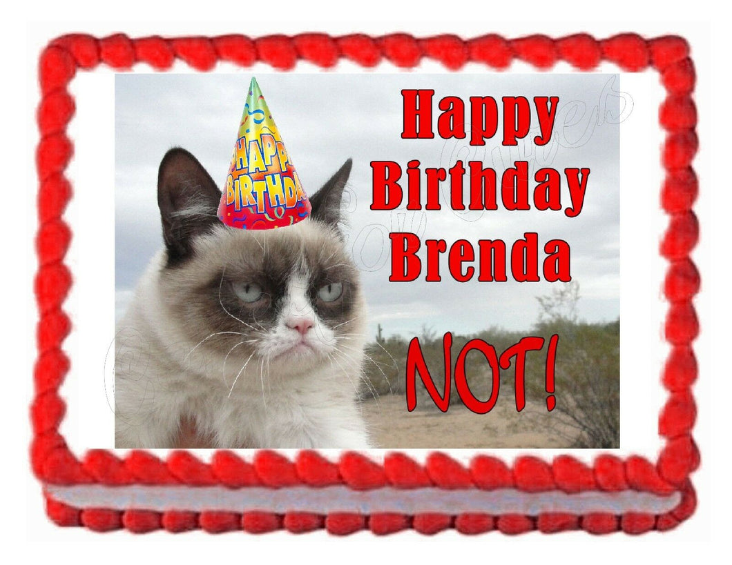 Grumpy Cat at the Beach Edible Cake Image Cake Topper - Cakes For Cures