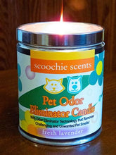 Load image into Gallery viewer, Scoochie Scents Fresh Lavender Pet Odor Candle